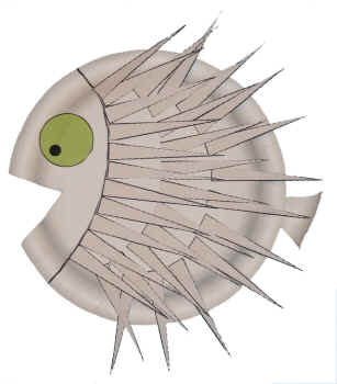 Pufferfish paper plate craft dltks crafts for kids porcupine fish paper plate craft maxwellsz
