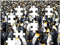 Penguin jigsaw puzzles