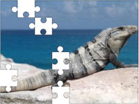 Reptile jigsaw puzzles