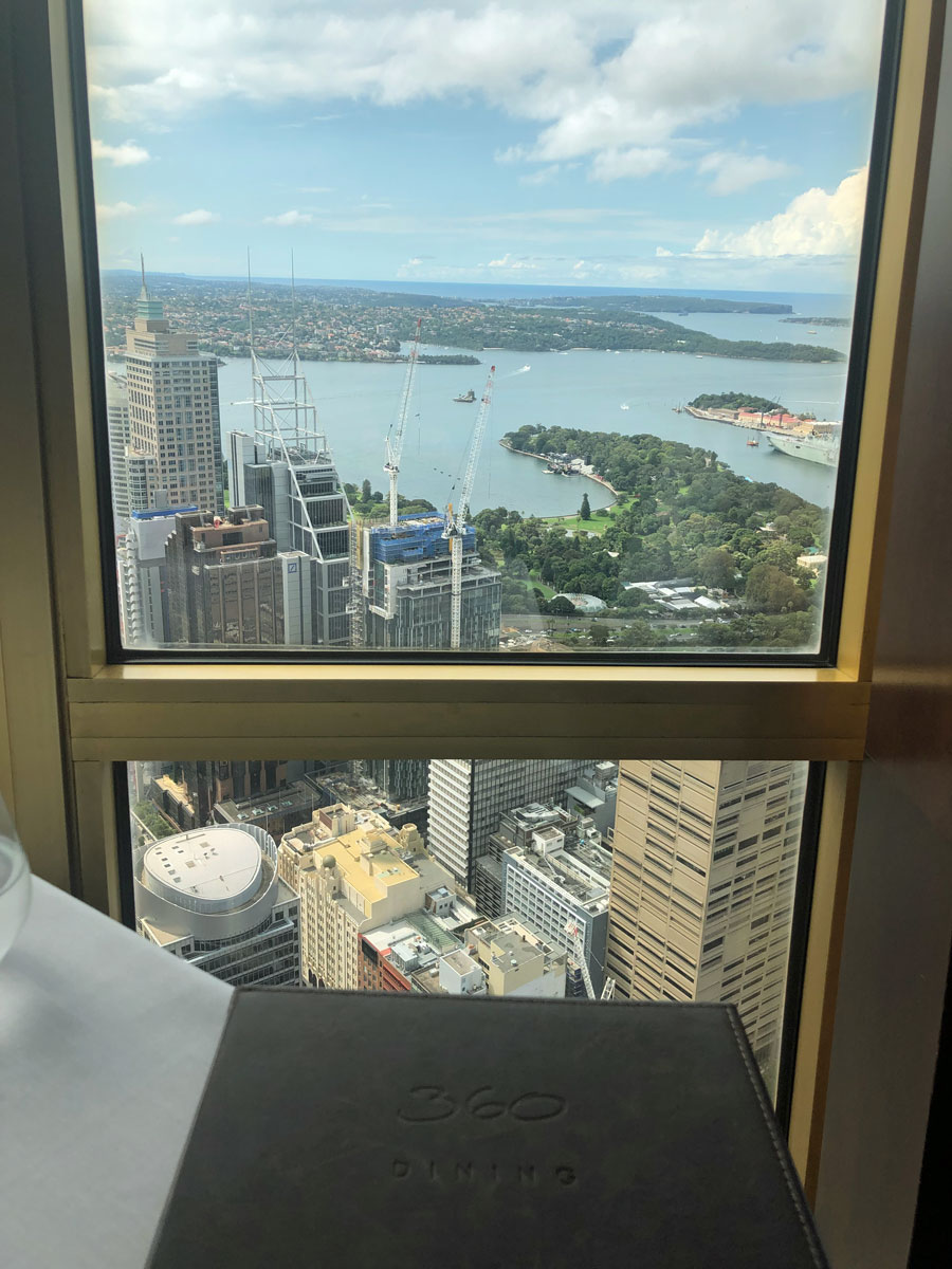 Vantage point during lunch at the Sydney Eye.