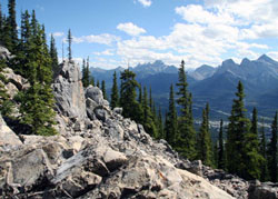 Rocky view from the trail of Mount Lady MacDonald near Canmore, AB.