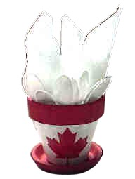 canada day party pot