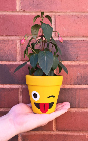 Plant Pot likewise Snowdrop Tracing Page also Wyoming State Flower besides Spot Differences Worksheet likewise Squilt. on flower coloring pages for children