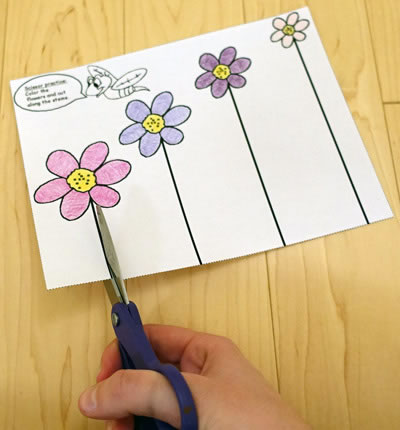 Scissor skills worksheets