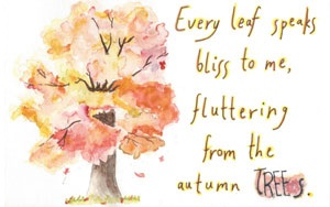 Every leaf speaks bliss to me, fluttering from the autumn trees.