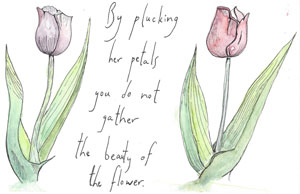 By plucking her petals you do not gather the beauty of the flower.