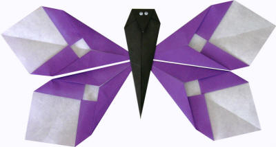 Origami Instructions Section Butterfly
