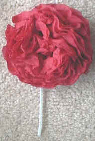 How to make tissue paper flowers for your hair flowers healthy diy paper flower crown honestly tissue flowers take napkins and cut in half lengthwise so they re rectangles mightylinksfo